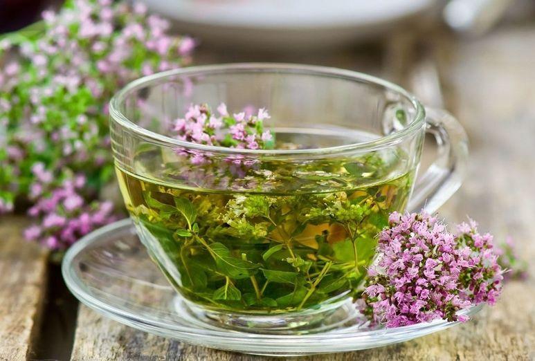 Заваривать душицу с чаем